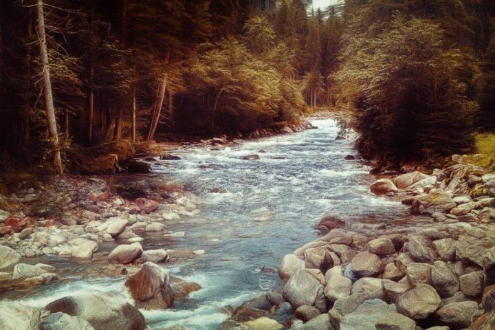 sonhar com rio